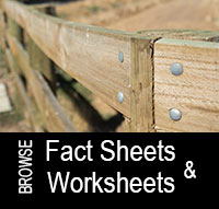 Find a Fact Sheet or Worksheet