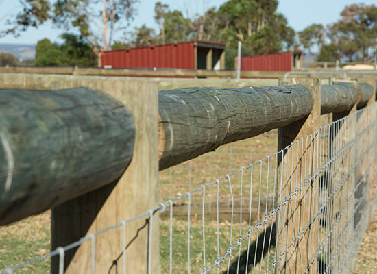 PERMAPoles and mesh in a post and rail fence